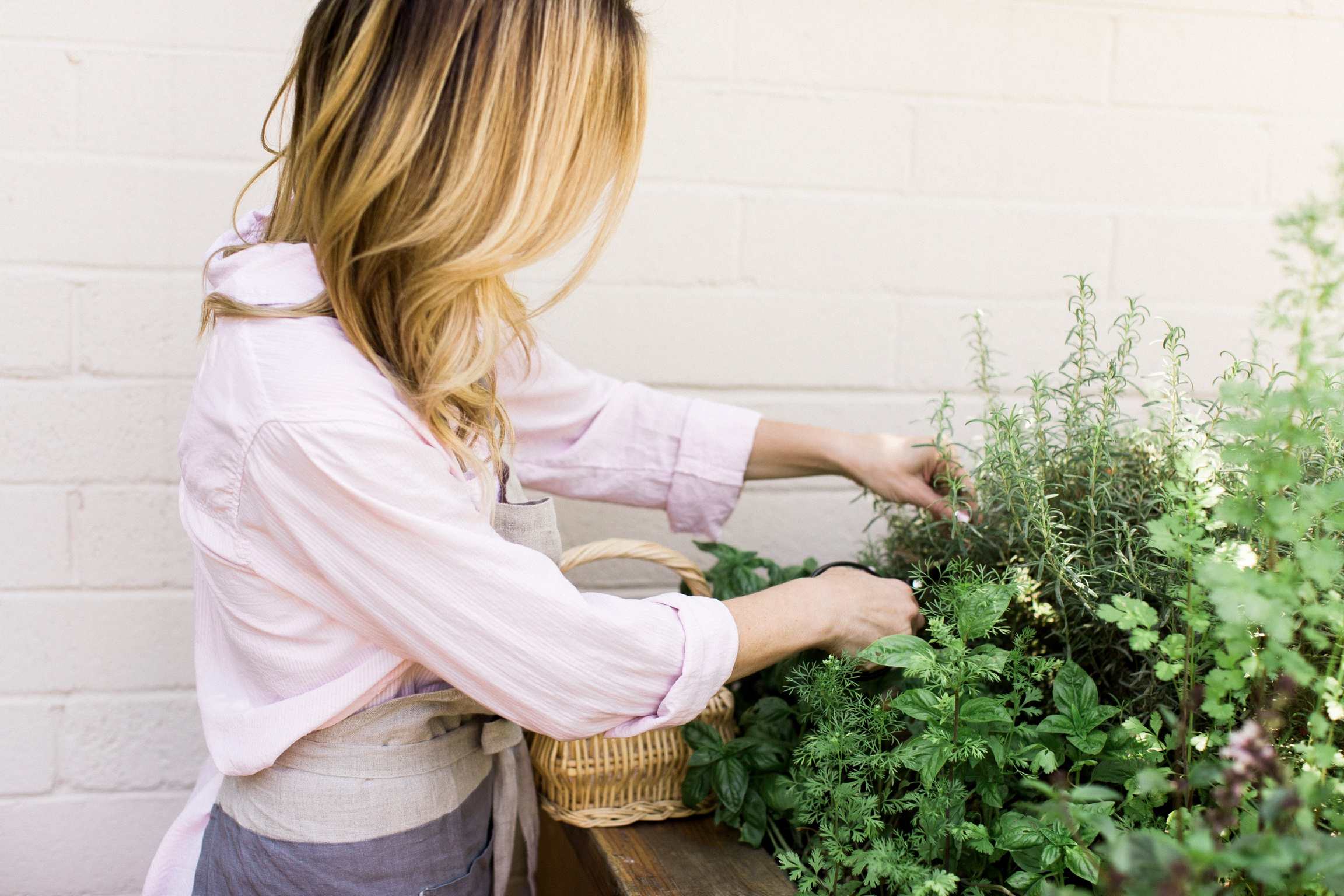 Clipping herbs for plate garnish