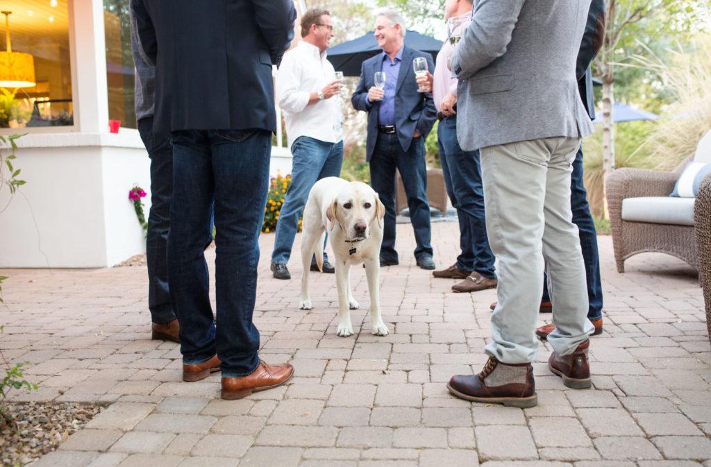Dog at party