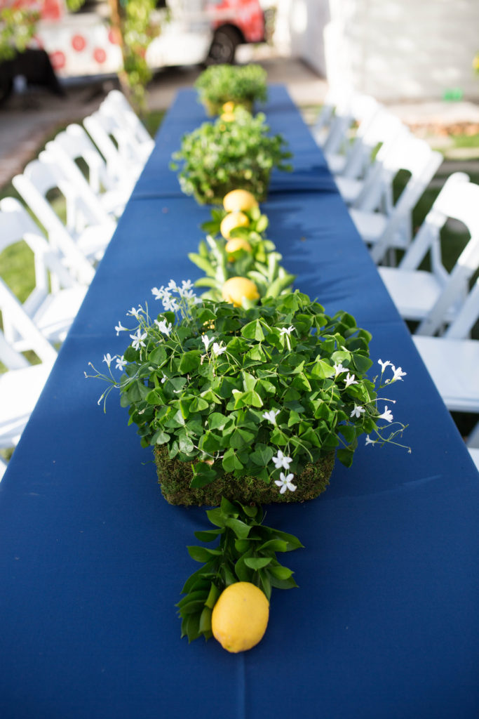 natural tablescape with clover and citrus