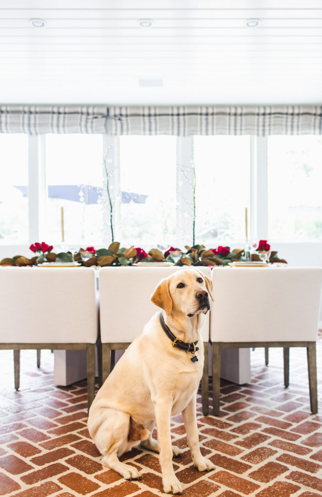 Yellow Lab holiday table