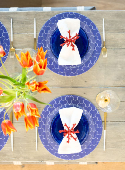 Blue, White & Coral Casual Place Setting