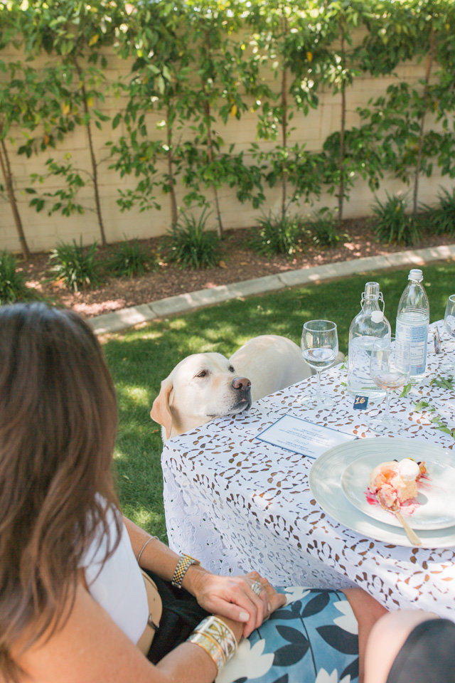 backyard luncheon