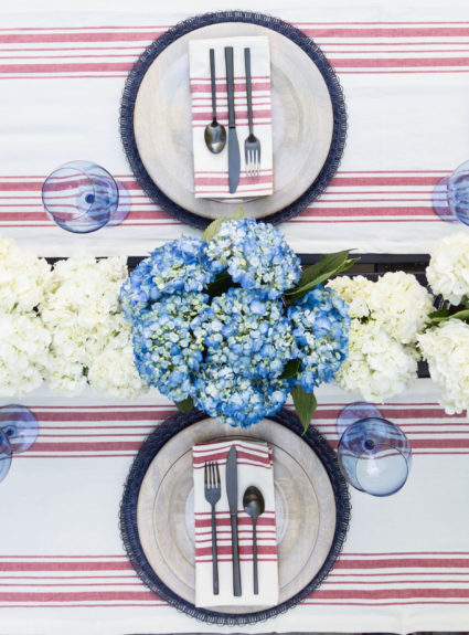 4th of July Party: Red and Blue Chic