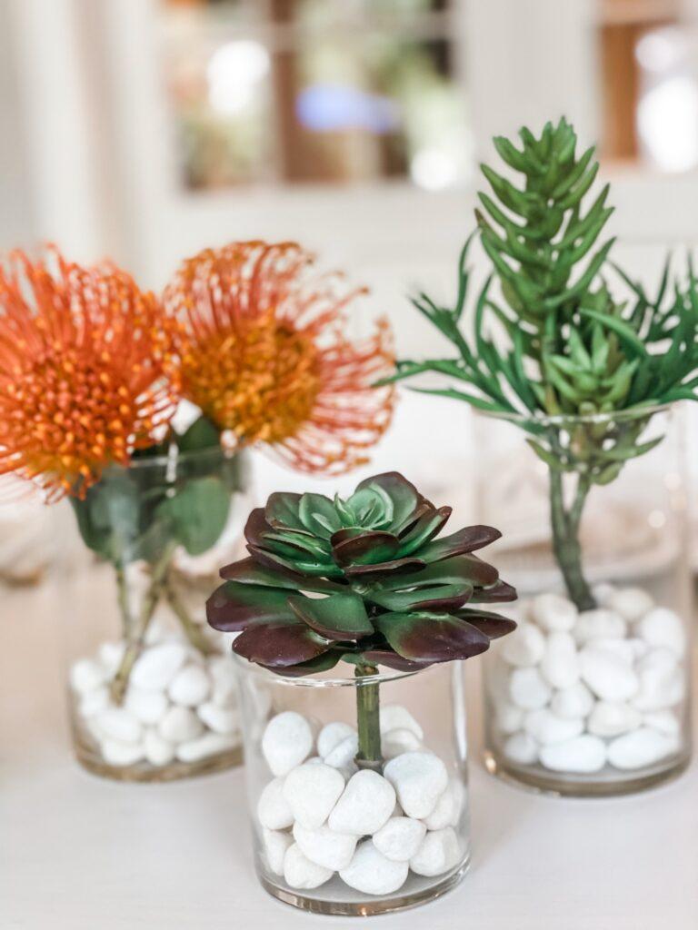 succulent plant table